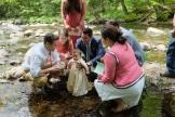 streamside baptism linus