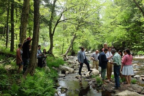 streamside group