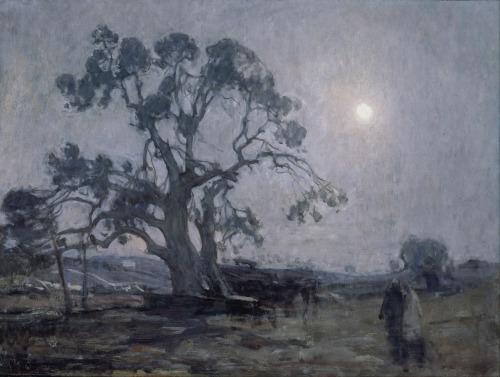 abrahams oak
